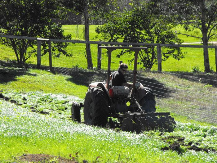 Creation of an Organic Farm