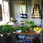 food-stall-2