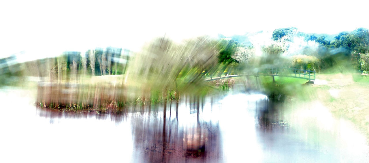 Impressionist Photography Project